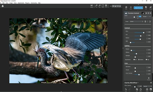 Screenshot of Precision Contrast section in Clarity for Topaz Studio