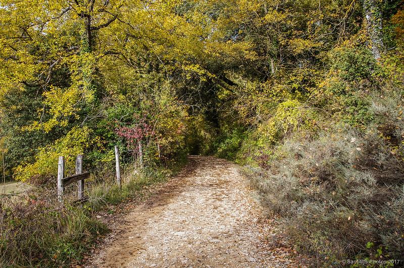 El camino al Nacedero del Urederra
