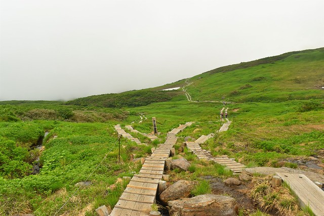 月山 木道の登山道