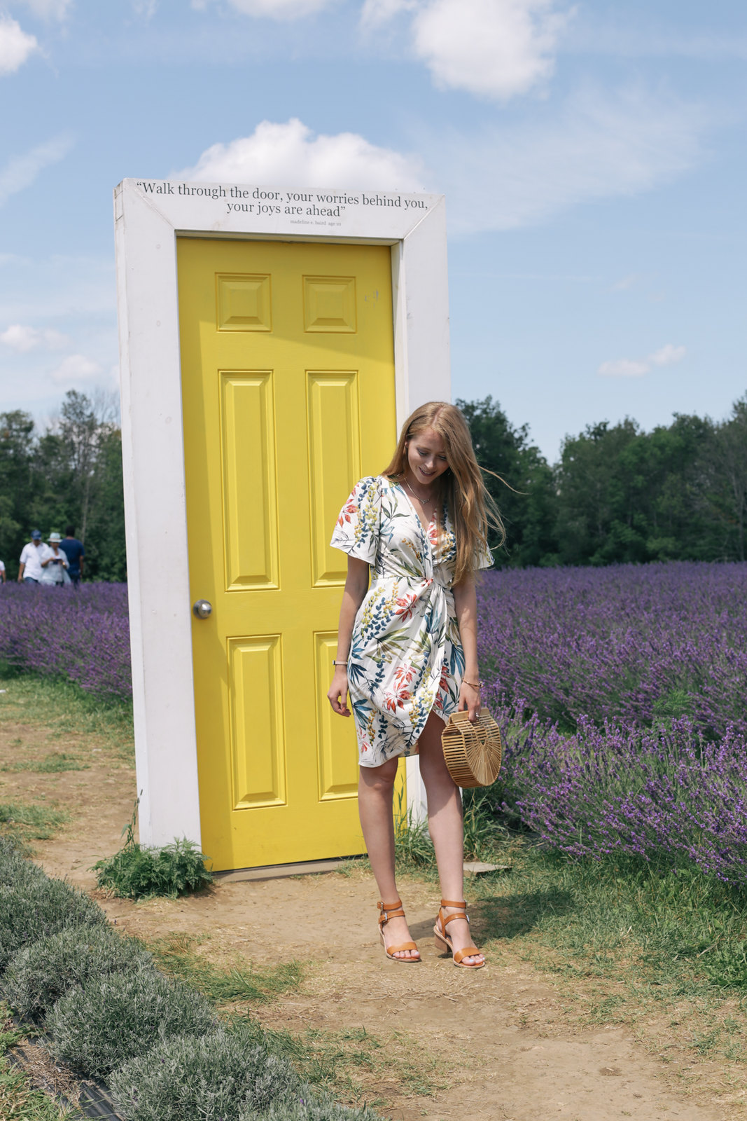 Terre Bleu Lavender Farm yellow door