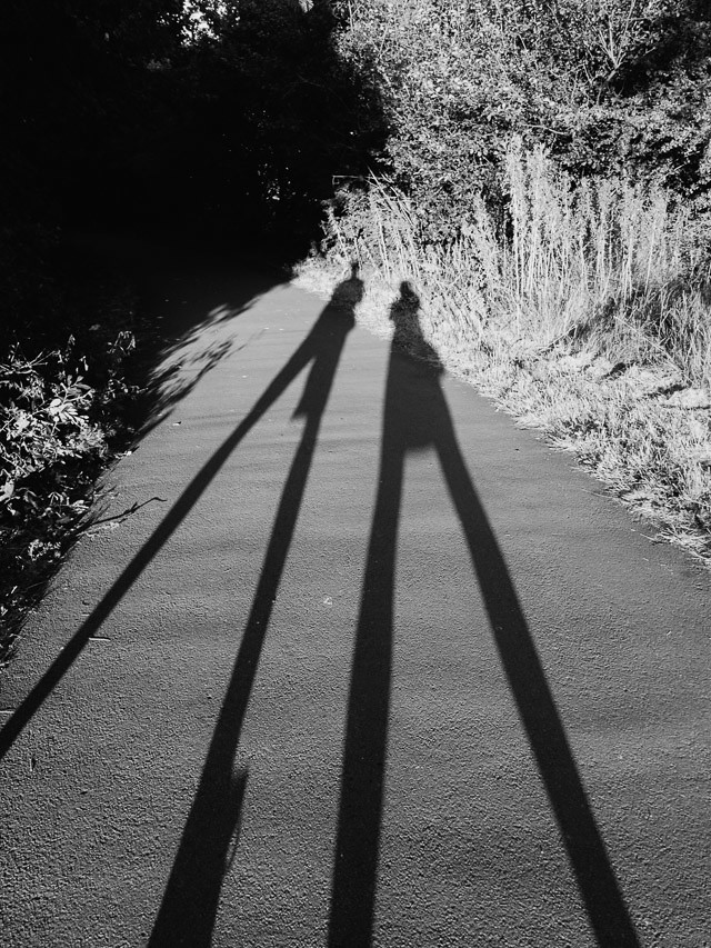 shadow play in black and white