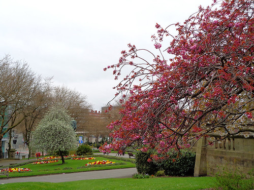 St Johns Gardens 08 | by worldtravelimages.net