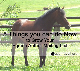 5 Things you can do Now to Grow Your Equine Author Mailing List @equineauthors