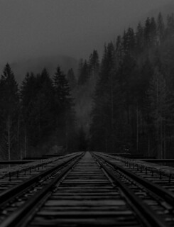Tracks | by augustinecollective