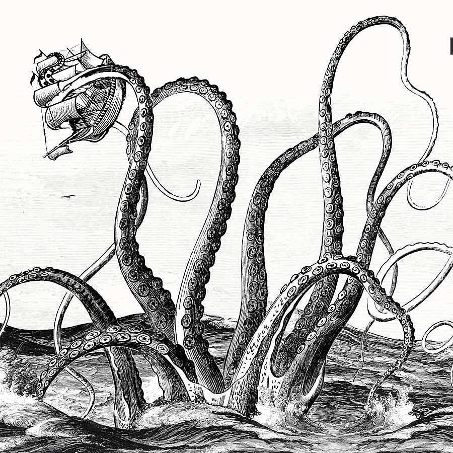 Image result for kraken