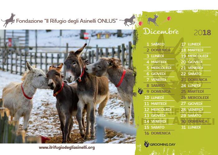 Il Rifugio Degli Asinelli Calendario.Calendario Da Tavolo Dicembre Per Ordinare Store Ilrifu