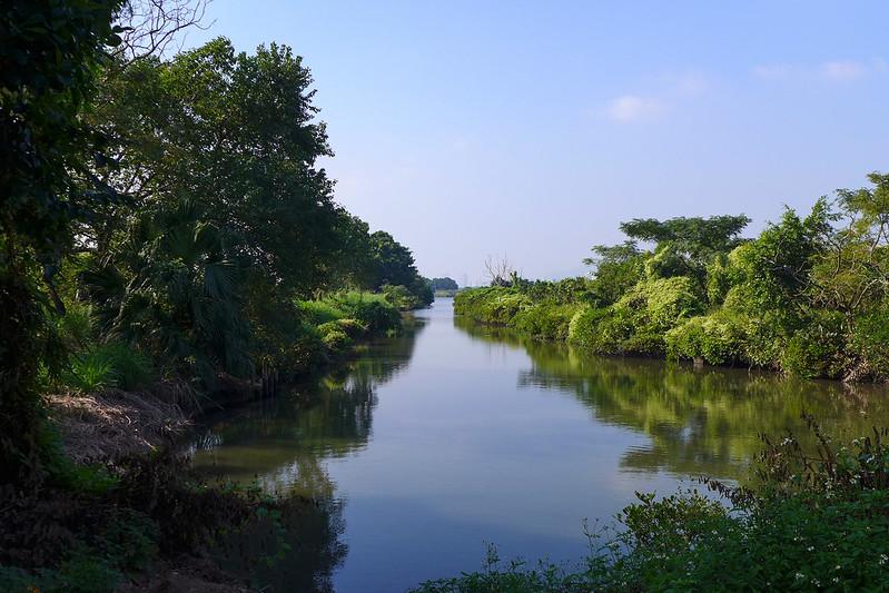 香港米埔濕地,圖片來源:維基百科.