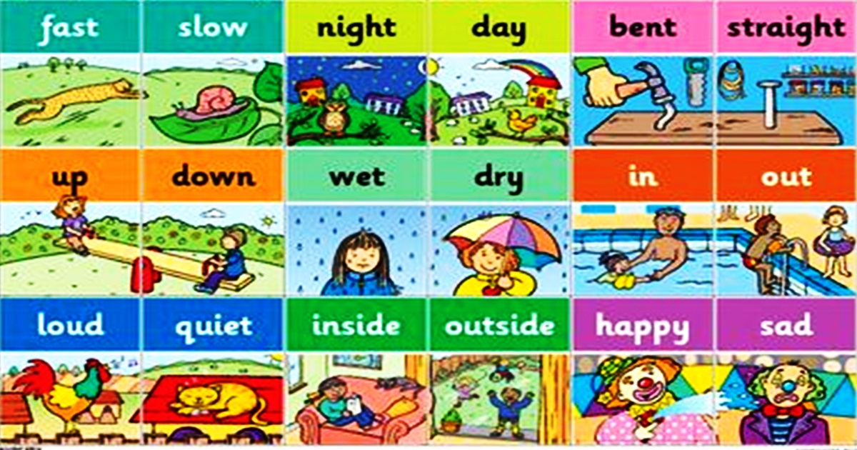 List of Common Antonyms in English 5