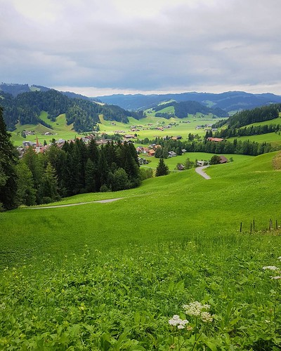 That's the kond of green you only find at #Endlebuch. #marbachegg #inlovewithswitzerland #biosphere by @pgart | by pgart