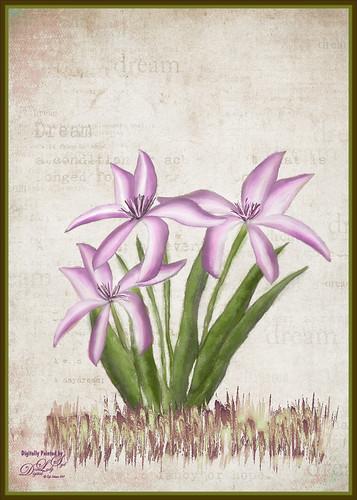 Digitally painted Purple-Pink Flowers