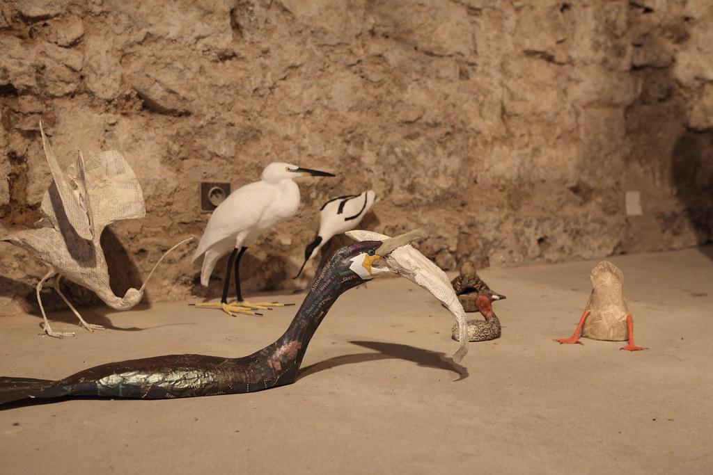 藝術家安娜莉絲的表現方式詼諧可愛,只有半截身體的鳥類,和地板融合得恰到好處,彷彿置身水中