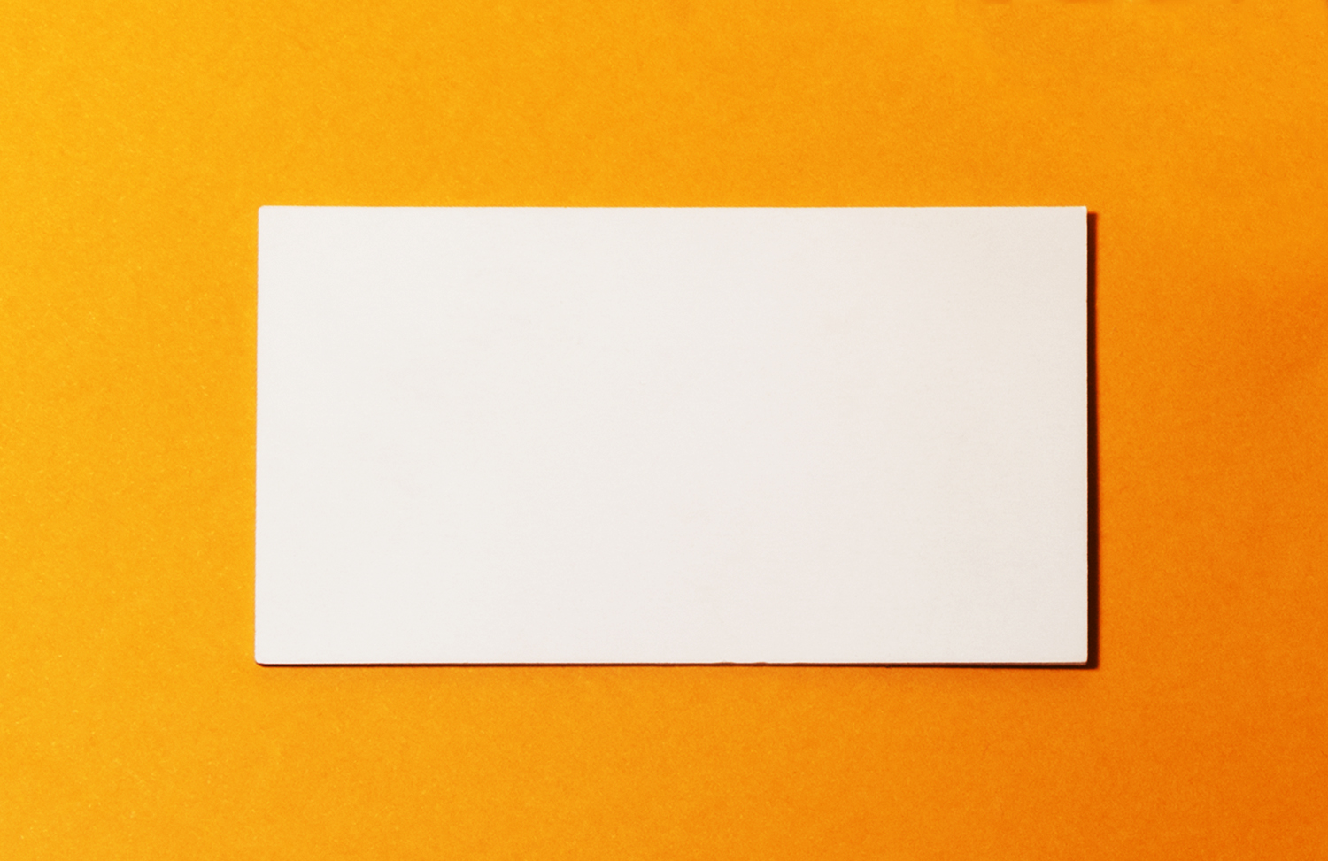 Dori the giant blank business card reheart Gallery
