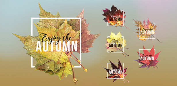 Autumn Titles 3