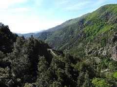 La vallée du Fium'Altu