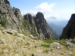 Descente du versant NE de Bocca di u Chjostru (Collet des Belges) avec les deux collets en face de nous