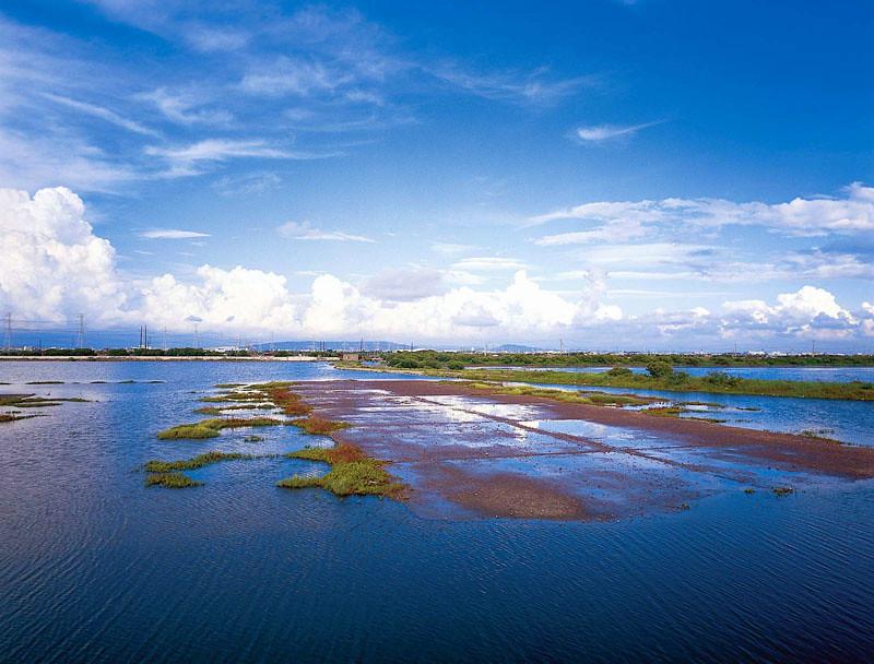 永安鄉的烏樹林鹽場。圖片來源:永安鄉公所網站。