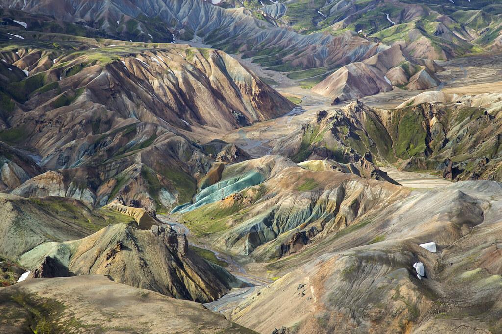 Image result for grænihryggur