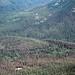 1989. Western spruce budworm defoliation. Yakima Indian Reservation, Washington.