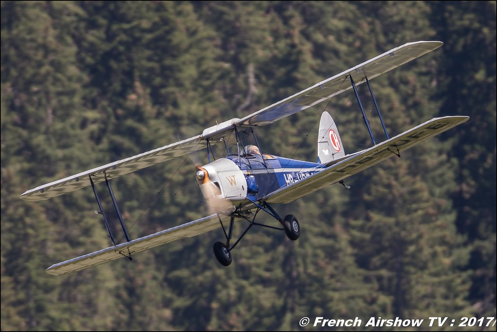 De Havilland DH-60C III Moth Major - HB-UPE 50ans d'Aviation Megeve 2017 - altiport de Megève , Haute-Savoie, Auvergne-Rhône-Alpes , Meeting Aerien 2017