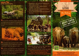 Elephant Jungle Sanctuary Chiang Mai Thailand Brochure 1