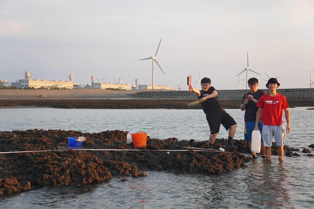 圖片來源:李坤璋 東海大學生命科學系專任助理、桃園在地聯盟