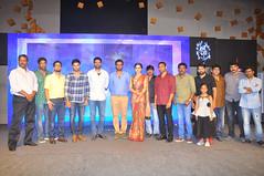 AnandoBrahma Audio Launch Stills
