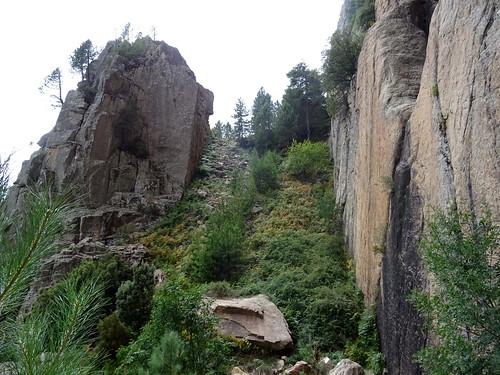 La traversée infernale sous les parois contreforts de Pta di San Gio Agostinu : la rampe de descente au ruisseau de Canniccia avec les ronces en bas