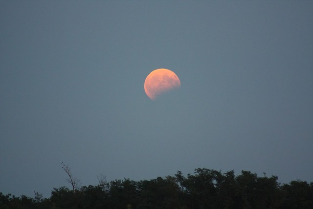 VCSE -- Mikics Károly felvétele a már fogyatkozásban lévő, vöröses színű, kelőben lévő Holdról -- Mikics Károly