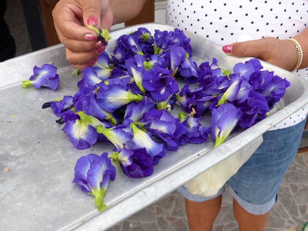 Fleurs Comestibles Ces Petites Fleurs Bleues S Appellent Flickr