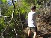 Démaquisage après le 1er ruisseau dans la descente après Bocca di Ricu (Olivier)