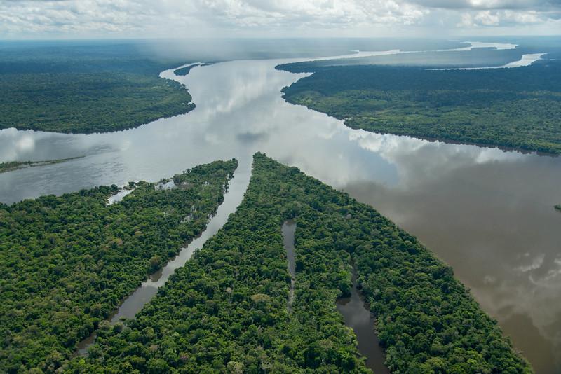 作者:Zig Koch;圖片來源:WWF