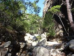 La branche Carciara à la confluence Frassiccia