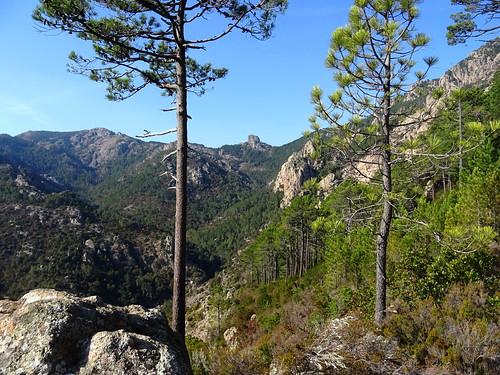La vallée amont du Cavu vers le Castedducciu depuis Bocca di Ricu