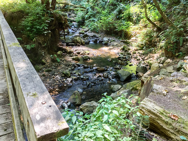 Purisima Creek