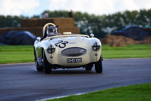 Karsten Le Blanc, Austin Healey 100S, Freddie March Memorial Trophy, Goodwood Revival 2017