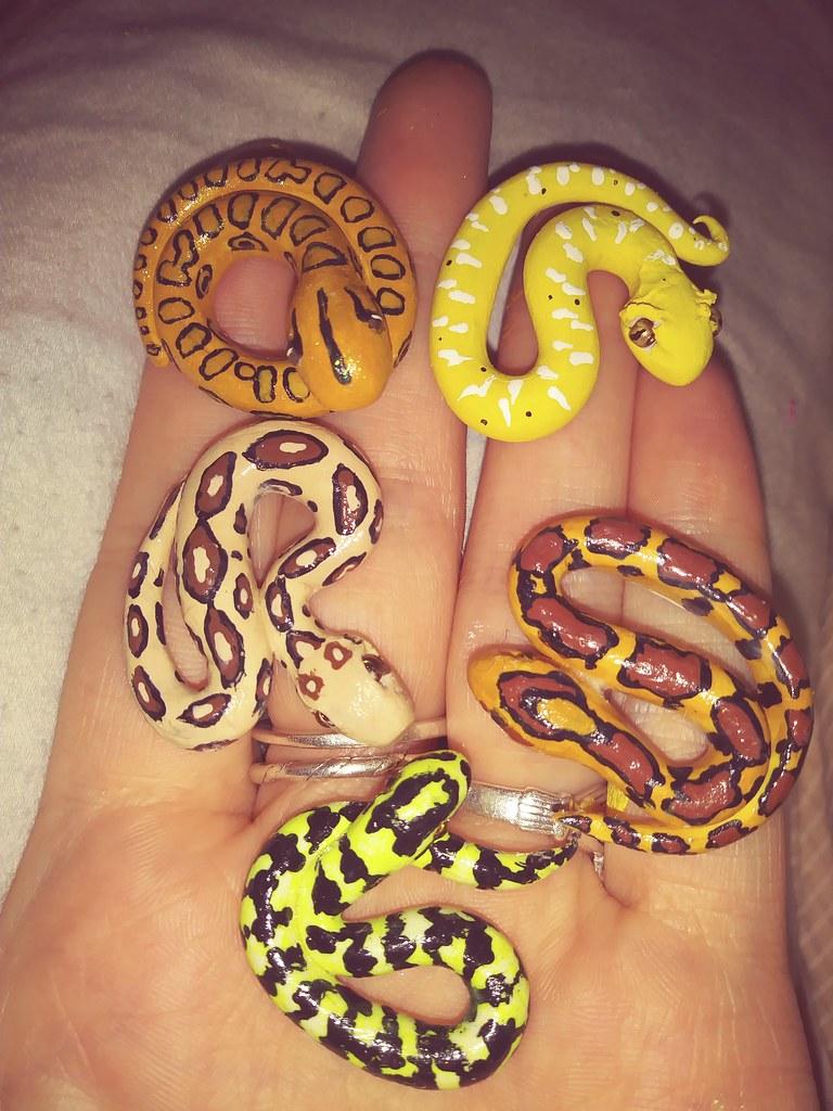 corn snake vs ball python