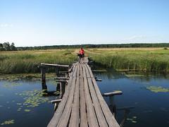 Міст через канал Хабарище
