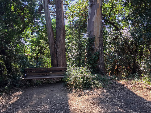 Bench at the 'Salamander Flat'
