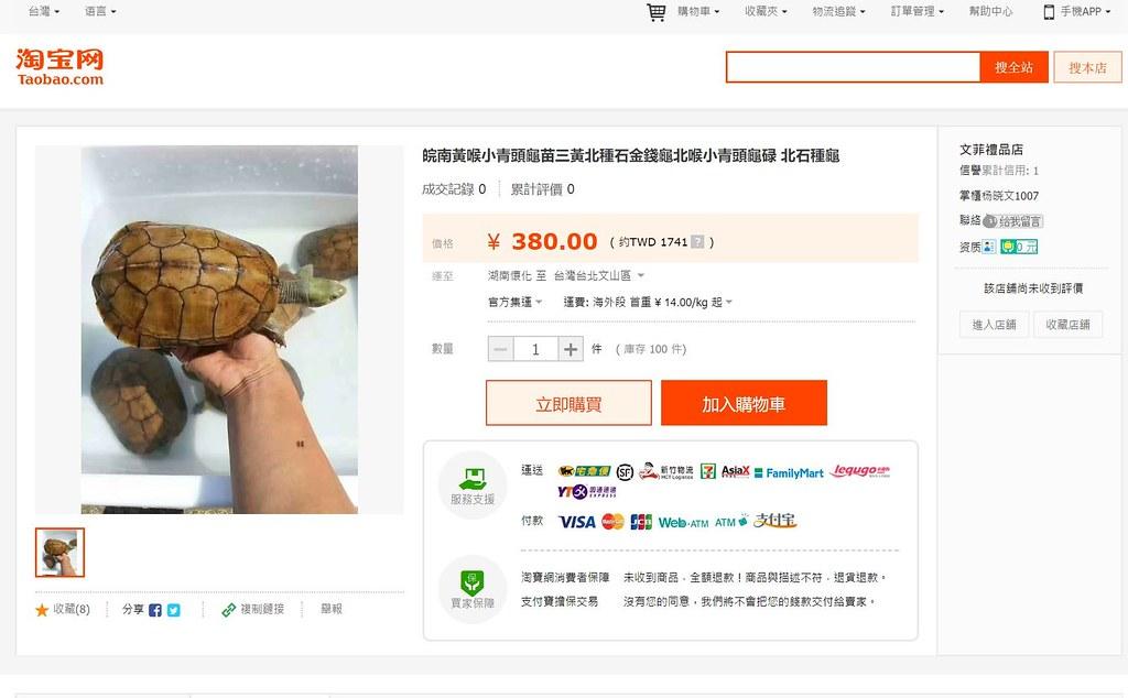 淘寶網上可找到石金錢龜的販售。圖片擷取自淘寶網。