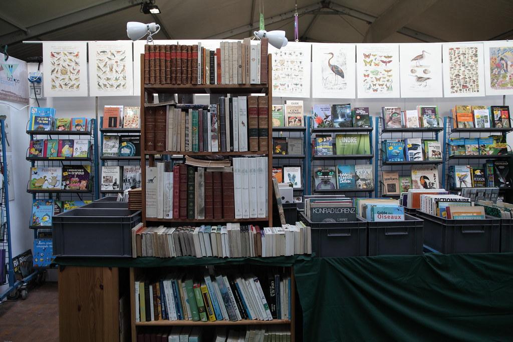 各式各樣與自然相關的獨立書店、二手書店也在現場販售,還有精美手繪海報