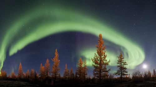 Northern lights | by ky0ncheng