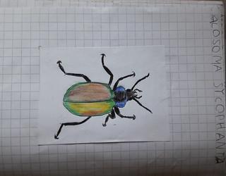 1a disegno