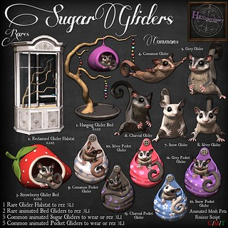 HEXtraordinary Sugar Gliders Gacha Key | by HEXtraordinary!