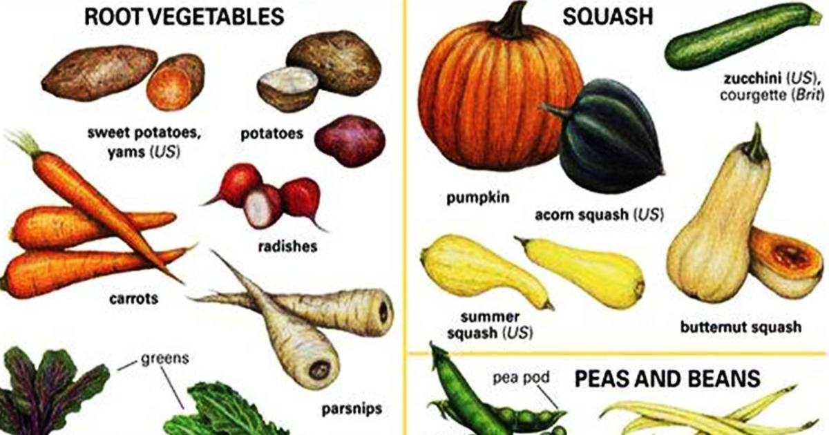 Vegetables Vocabulary 5