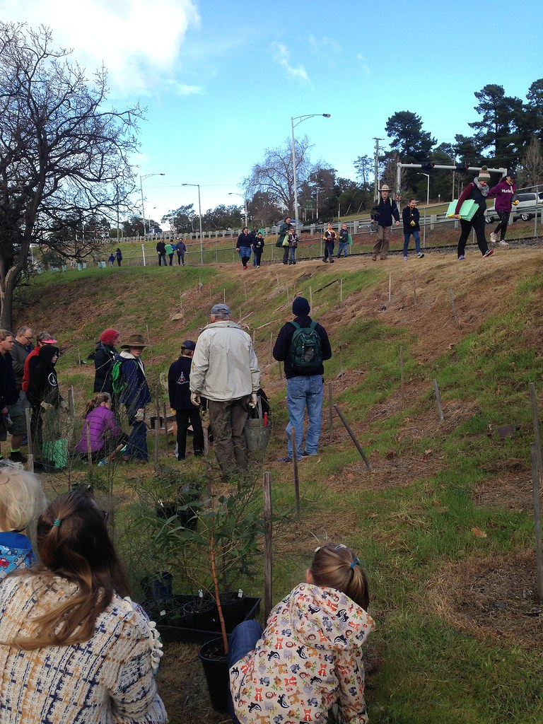 Royal Tasmanian Botanical Gardens supporting National Tree… | Flickr