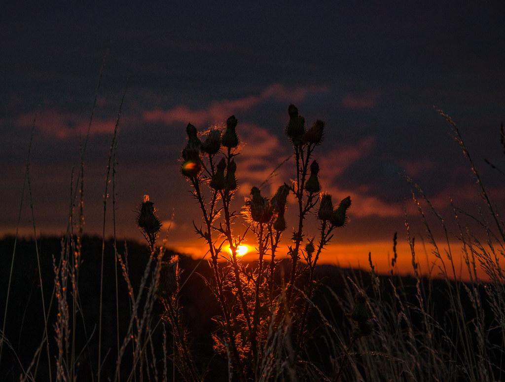 Spätsommer  Morgenrot im Spätsommer   Sonnenaufgang in Neuhaus am Rennwe…   Flickr