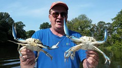 Eldridge Watts holds up two crabs