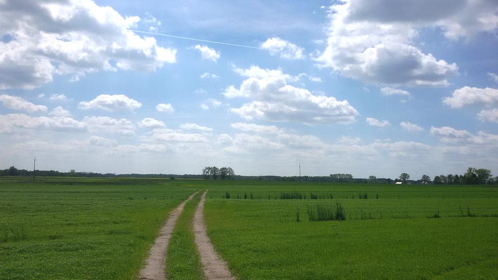 droga do Skaryszewa