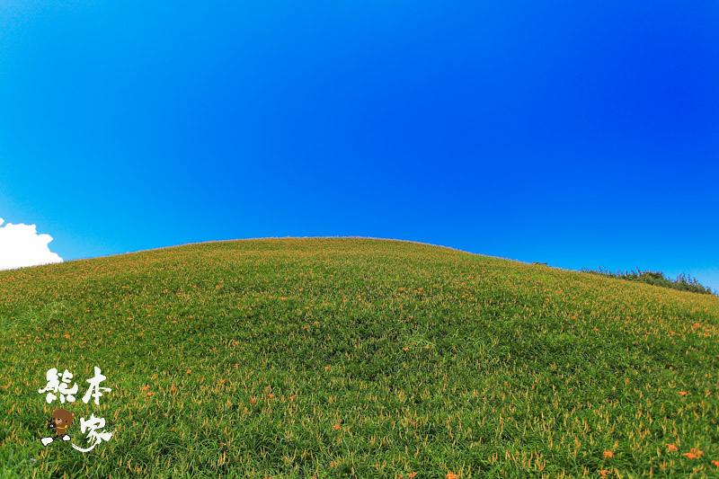 六十石山金針花季|金針花季時間|俯覽花東縱谷絕佳觀景區|台灣小瑞士|六十石山金針花季建議交通住宿民宿資訊