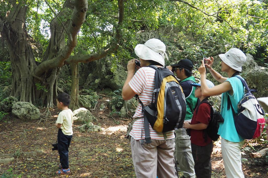 高雄鳥會今年暑假舉辦了四個梯次的獼猴親子調查隊,認識壽山獼猴生態。攝影:李育琴。